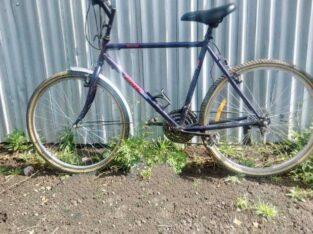 PHONEX BICYCLE