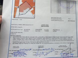 FERASH BET LEGIZEW 20.000 WERAWI KRAY YALEW